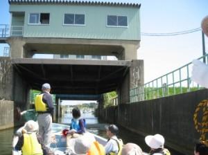 くぐりぬけて阿賀野川へ(2)