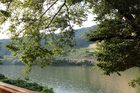 河床から見た阿賀野川