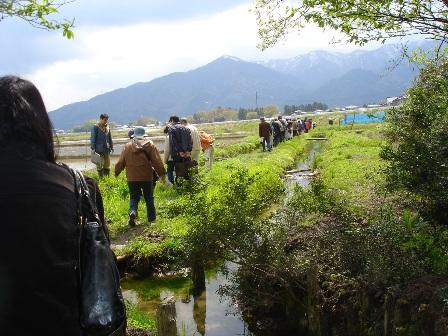 トゲソ観察会の様子2011.4.29