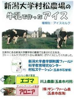 新潟大学村松農場の牛乳で作ったアイス ちらし