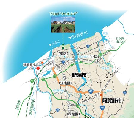 新潟市東区下山やわ肌ネギin阿賀野川流域地図