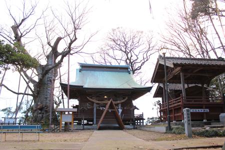 中腹・ケヤキと神社と舞殿