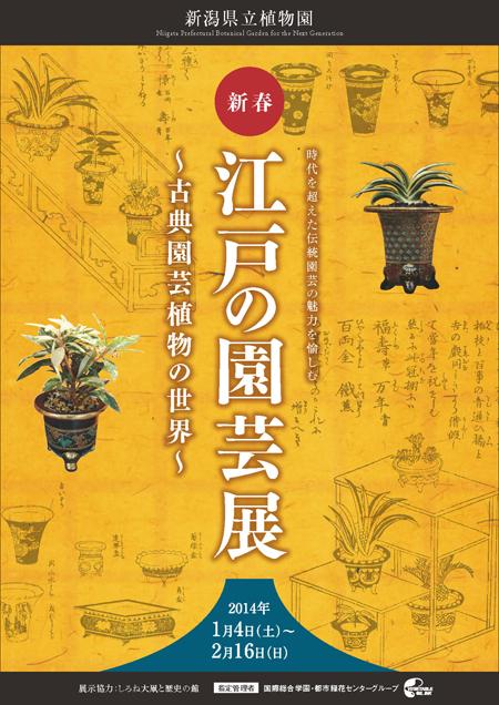 新春・江戸の園芸展~古典園芸植物の世界~チラシ_ページ_1