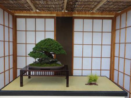 新春江戸の園芸展3(新潟県立植物園ホームページから引用)