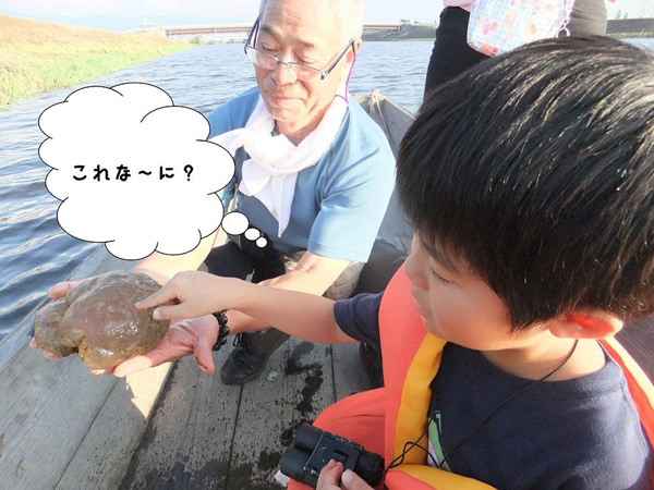 潟舟で福島潟の魅力発見!②(ねっとわーく福島潟ホームページより引用)@福島潟