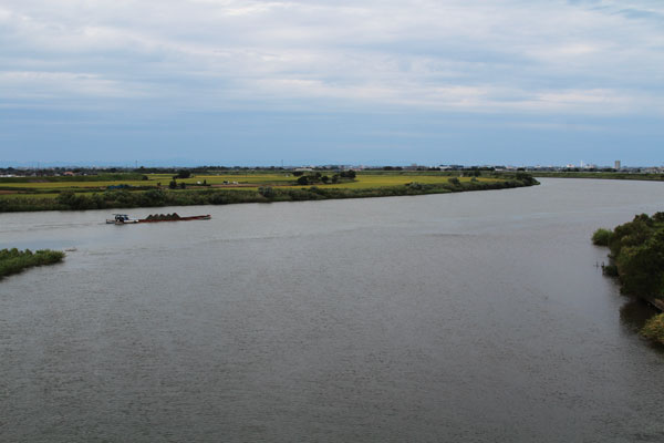 小阿賀野川と信濃川の合流